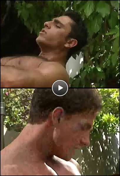 muscle studs gay porn video